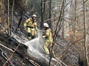 xx01 300x225 - Nachbarliche Löschhilfe beim Waldbrand in Braz